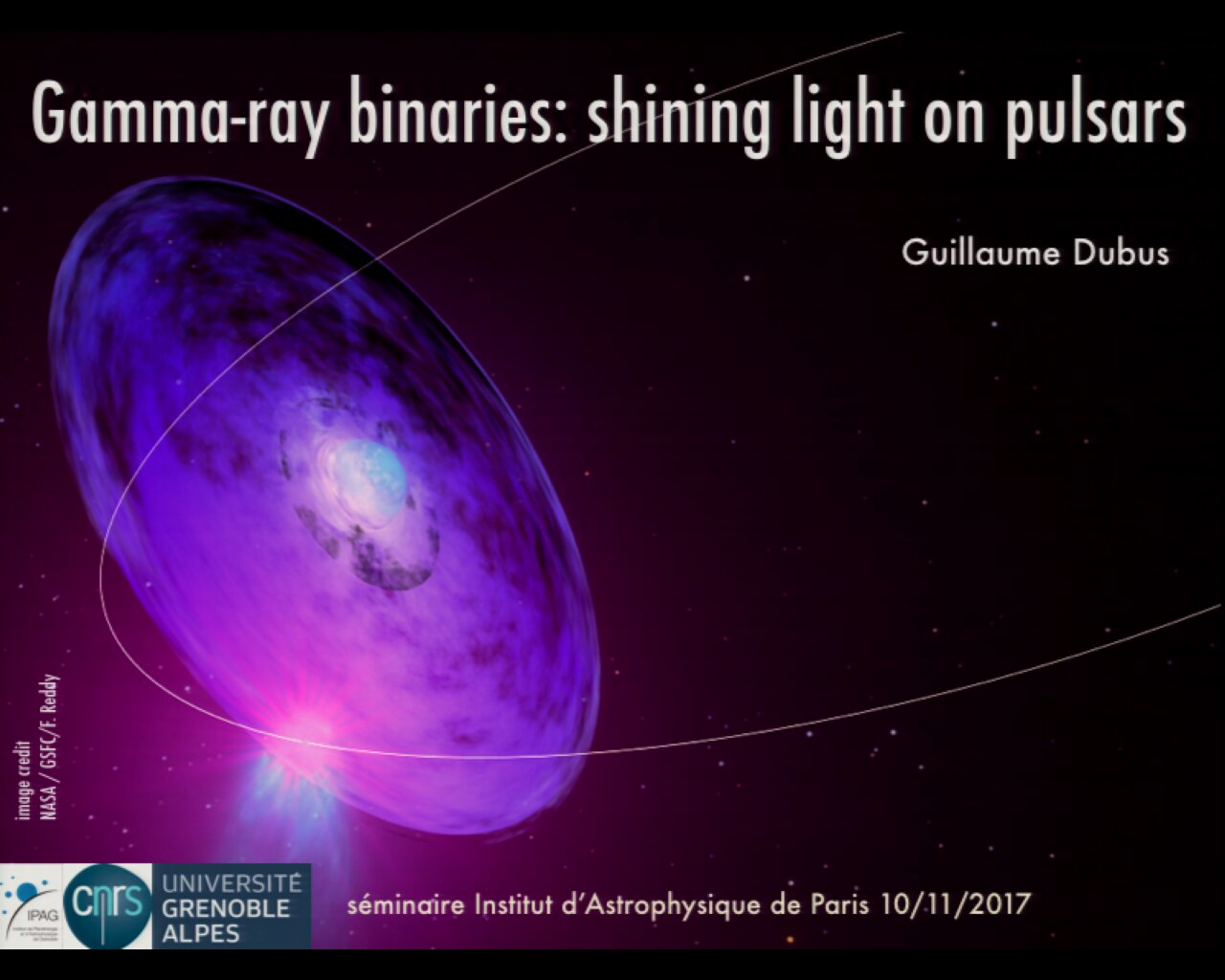 Gamma Ray Binaries Shining A Light On Pulsars